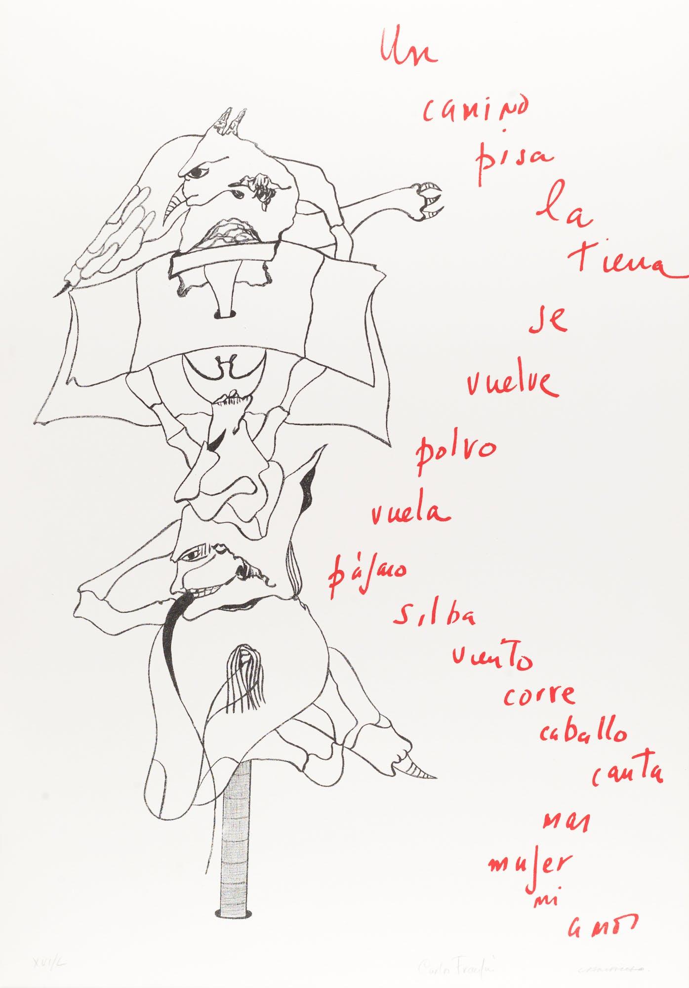 Poemas para mirar